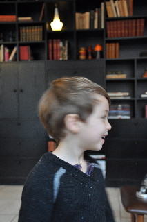 copenhagen visitor young boy