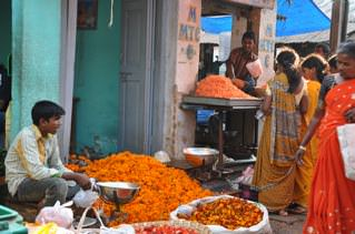 Neeleshwar, Coorgh, Mysore in Kerala  4  India