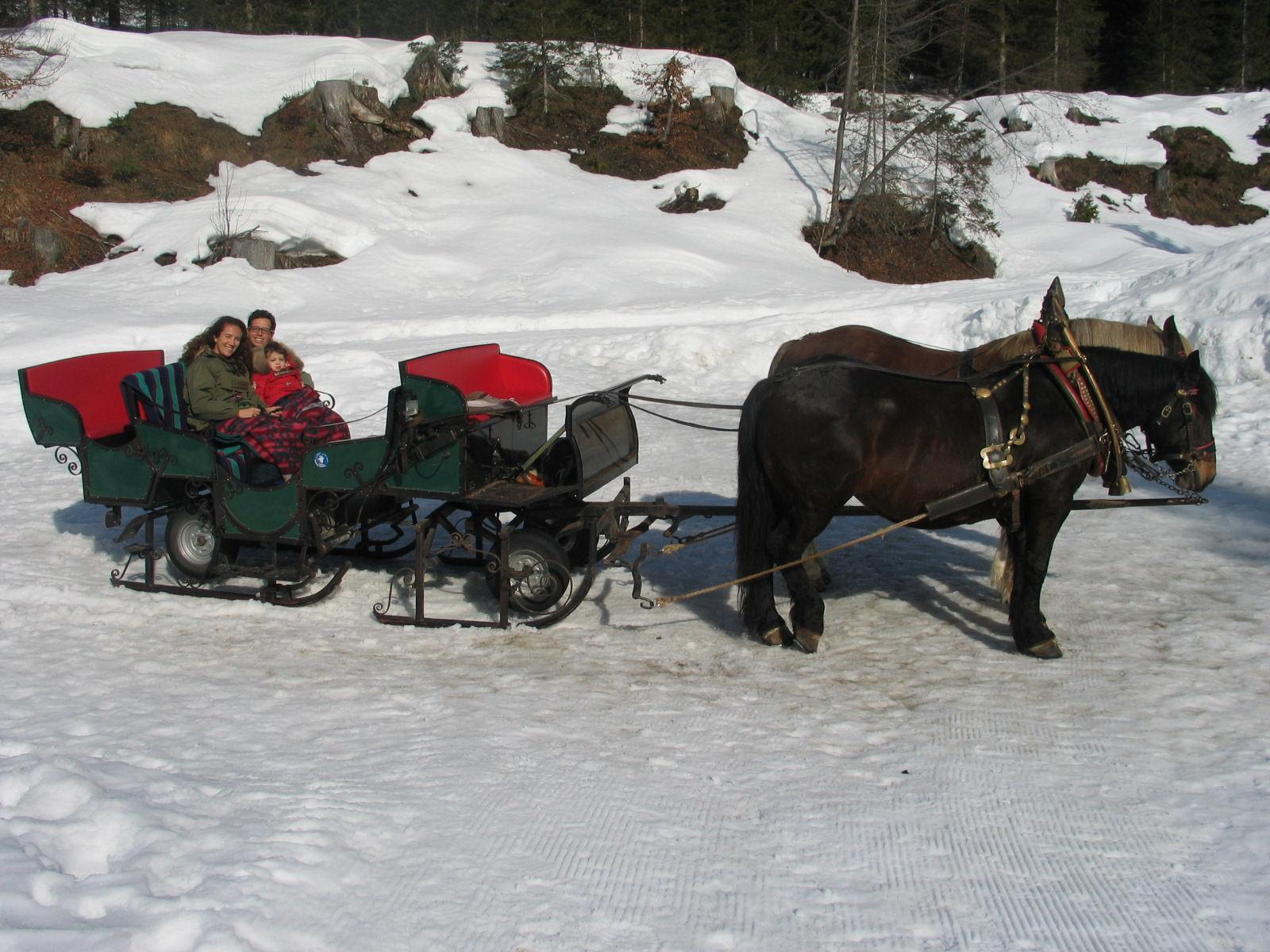 carriage ride Austria