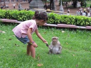 monkeys in cambodia