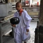 Novice at Mahagandhayon, Burma
