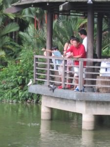 At the Singapore botanical garden