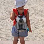 girl with koala bear backpack