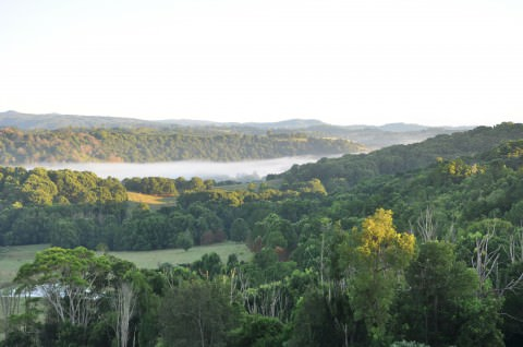 The view, Bangalow Australia