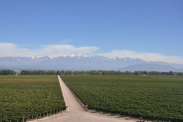 Mendoza wine region over the Andes