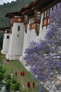 Dzong of Punakha