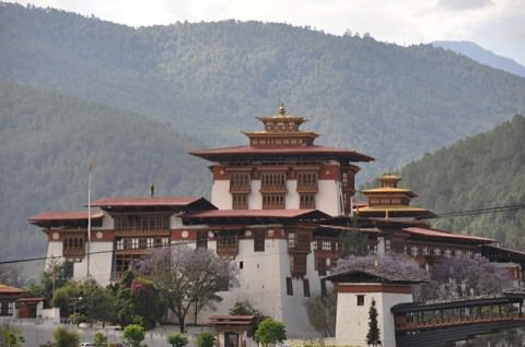 The Punkha dzong