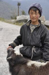 Young yak herder in Bhutan