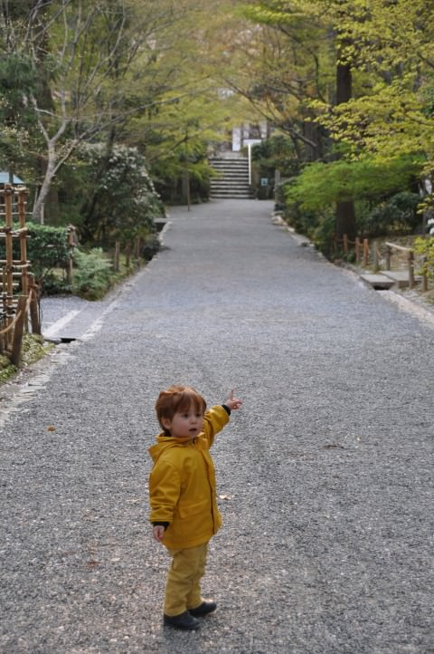 children in japanese garden