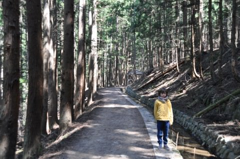 boy hiking trail to see snow monkeys in Japan
