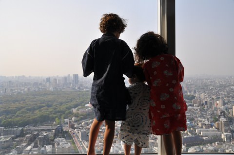 View from the Top, at The Park Hyatt Tokyo