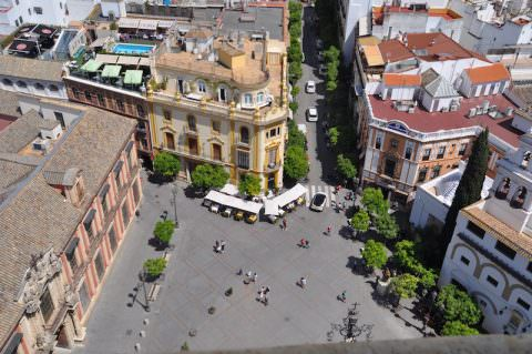 the view from the top of the cathedral, Sevilla