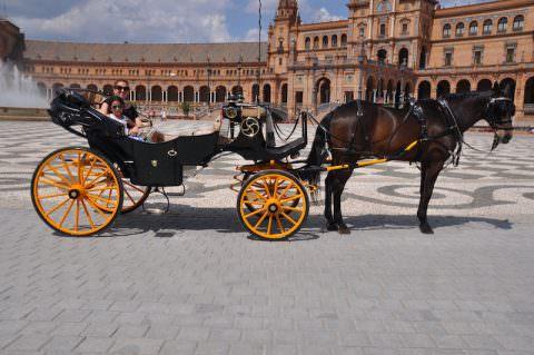 touring Sevilla the proper way