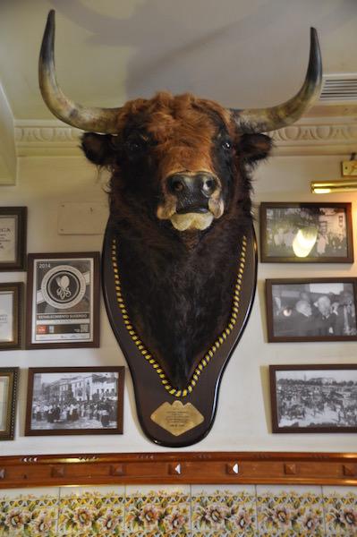 The bull at Estrella
