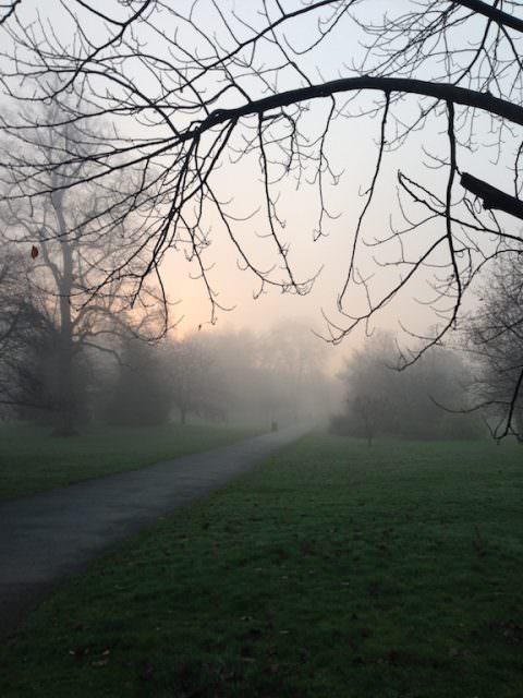 morning walk in Primrose Hill, London