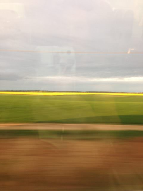 In the TGV fast train from Avignon to Patris, France
