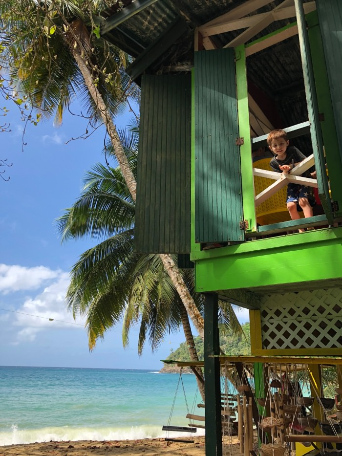 say hello from treehouse on one of the 10 prettiest beach es in the world! Tobago