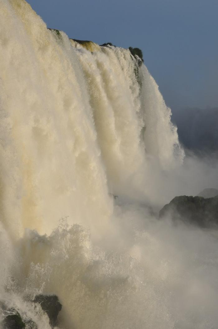 Iguana falls border of Brazil and Argentina