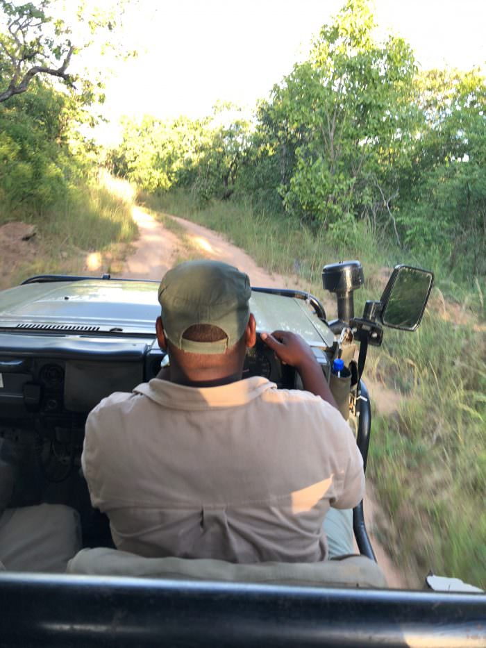 Man driving through Majete park, safari, Africa