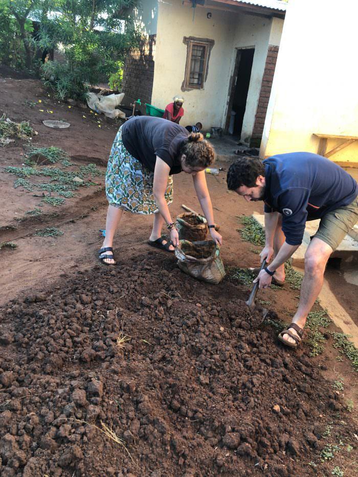 planting mustard seeds, Zomba Plateau, Africa, Malawi