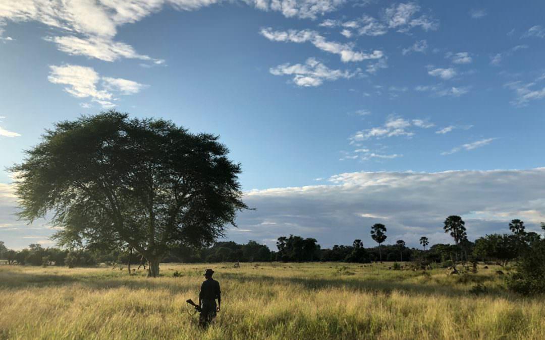 Malawi: from Liwonde to Lake Malawi [4/4]