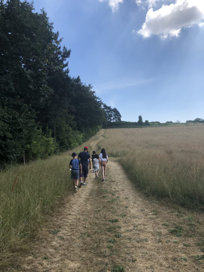summer camp, kent, hikes, children