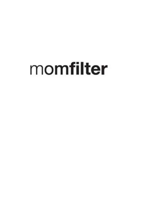 Momfilter Blog