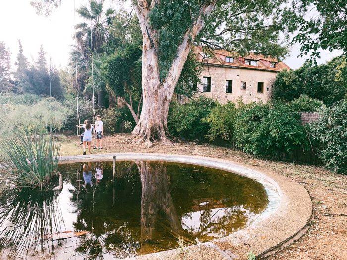 Children, Crete, Holiday, Home, Relaxing, Pond, Swing, BozAround